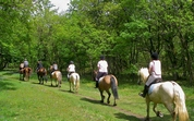 Horse riding in Umbria